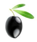 Black olive. One black olive isolated on white Stock Images