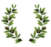 Black olive wreath. Black olive branches wreath. Bitmap picture with additional vecrot file Royalty Free Stock Photo