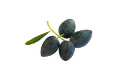 Black olives. Some black olives with leaf isolated on white background stock photo