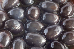 Black olives 2. The black olives in pickle Stock Images