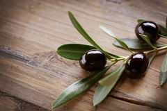 Black Olives. On a Wood background royalty free stock images
