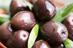Black olives. With leaves (close-up royalty free stock image