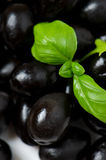 Black olives. With basil, closeup Royalty Free Stock Images