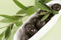 Black olives with branch. Black olives with olive branch in a bowl Royalty Free Stock Photos