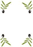 Black olives on branch wallpaper Stock Images