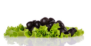 Black olives on green salad Stock Photos