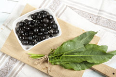 Black olives and green sorrel on light wooden board Stock Images