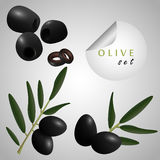 Black olives. Olives on the grey background Stock Photography