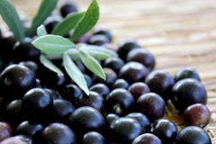Black Olives 1 Stock Photography