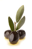 Black olives and oil Royalty Free Stock Image