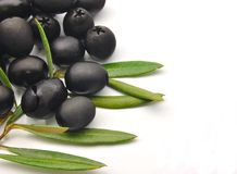 Black olives with olive leaves Royalty Free Stock Image