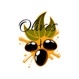 Black olives and olive oil vector icon Royalty Free Stock Image