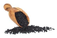 Black Onion Seed Stock Image