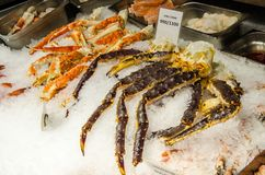 Black and Orange King Crab sea food for sale at Bergen fish market royalty free stock image