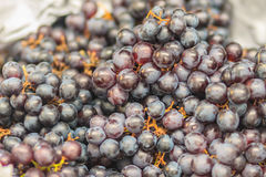Black organic seedless grapes for sale at the fruit market. Bunc Royalty Free Stock Photography