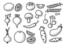 Black outline design, set of vegetables and fruits, vector royalty free illustration