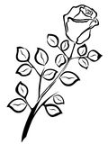 Black outline of single rose flower Royalty Free Stock Photos