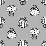 Black outline & white plane succulents on gray background.. Black outline & white plane succulents on gray background. Hand drawn style. Seamless pattern Stock Images