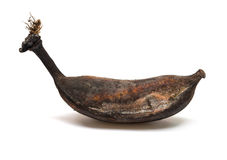 Black overripe banana Royalty Free Stock Images