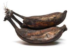 Black overripe bananas Royalty Free Stock Photo