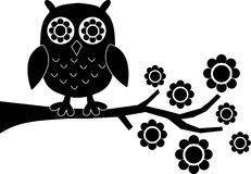 A black owl Stock Photography