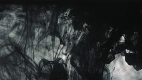 Black paint drops in the water. Black paint on the white background doing stains because of drop into water stock video