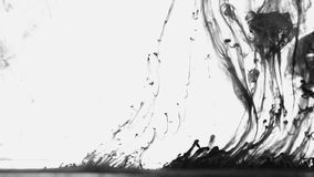 Black paint drops in the water. Black paint on the white background doing stains because of drop into water stock footage