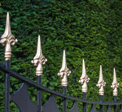 Black painted wrought iron fence with golden spikes Stock Image