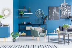 Modern blue living room interior. Black paintings on blue wall in modern living room interior with green armchair and plants Royalty Free Stock Photography