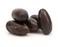 Black Palm Dates Royalty Free Stock Photo