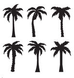 Black palm icon  on white background Royalty Free Stock Image