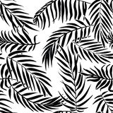 Black palm leaves on white background. Tropical silhouette seamless vector pattern. Black palm leaves on white background. Tropical silhouette. Seamless vector vector illustration