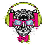 Black Panther headphones. Hipster. Vector illustration. Royalty Free Stock Images