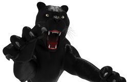 Black panther isolate on white background Stock Photo