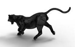Black panther isolate on white background. Black tiger, 3d Illustration, 3d render Royalty Free Stock Images