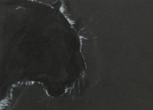 Black panther. Pastel drawing illustrating the shape of a black panther on black background Stock Photos