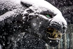 Free Black Panther Statue Seen Through Falling Snow Flakes Royalty Free Stock Photography - 109810967