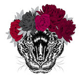 Black Panther in a wreath of flowers. Royalty Free Stock Photos