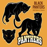 Black Panthers - vector set isoled. On light background Stock Photos