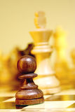 Black pawn. A game of chess comes to an end. The king is checkmated Royalty Free Stock Photo
