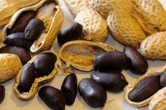 Black peanuts Royalty Free Stock Image