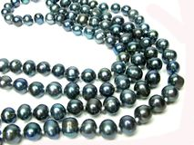 Black pearl beads Stock Photography