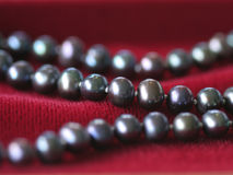 Black pearl necklace on red velvet. Close up of a black pearl necklace on red velvet Royalty Free Stock Image