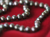 Black pearl necklace on red velvet2. Close up of a black pearl necklace on red velvet royalty free stock photography