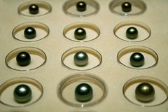 Black pearls Royalty Free Stock Photo