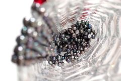 Black pearls in a vase. Black pearl necklace in the crystal vase. Focal point is on the pearls at the vase bottom Royalty Free Stock Photography