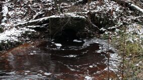 Black peat water flows out of the drainage pipe