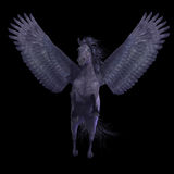 Black Pegasus on Black Royalty Free Stock Images