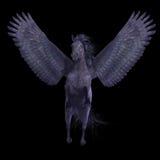 Black Pegasus on Black Royalty Free Stock Images