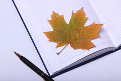Black pen lying on a notebook. yellow maple leaf Stock Image